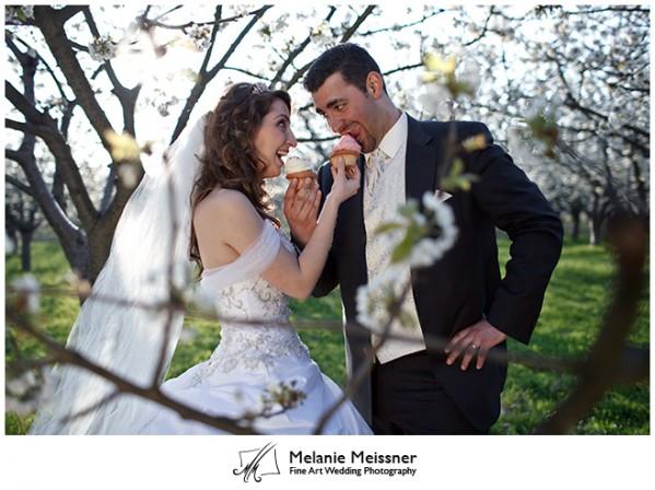 Hochzeitsfoto, Frühling, Apfelblüte