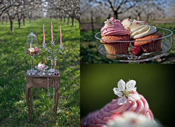 Hochzeitsfotos, Cupcakes, Apfelblüte, Kirschblüte, Frühling