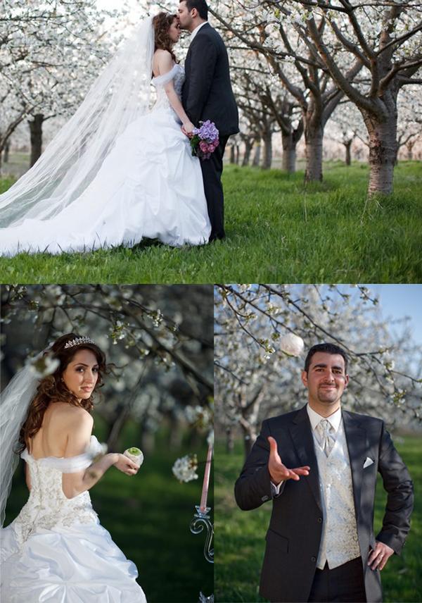 Hochzeitsfoto, Apfelblüte, Kirschblüte, Baumblüte, Blüten, Frühling