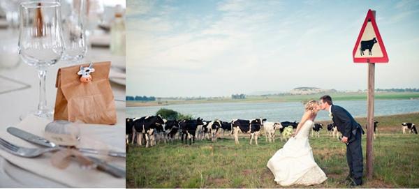 Hochzeit, Landhochzeit, Kühe, Hochzeitsfotos