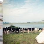 Ich und du und Müllers Kuh – Nick & Pum