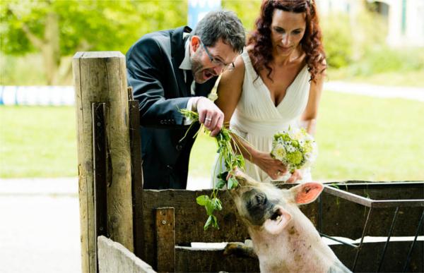 Hochzeit, Brautpaar, rustikal, Landliebe