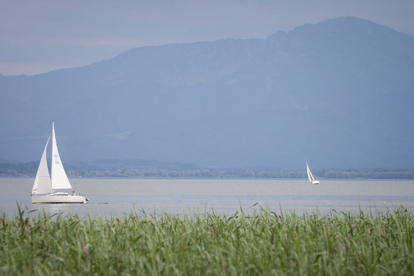 After Wedding Shooting am Chiemsee, Hochzeit, Sommer