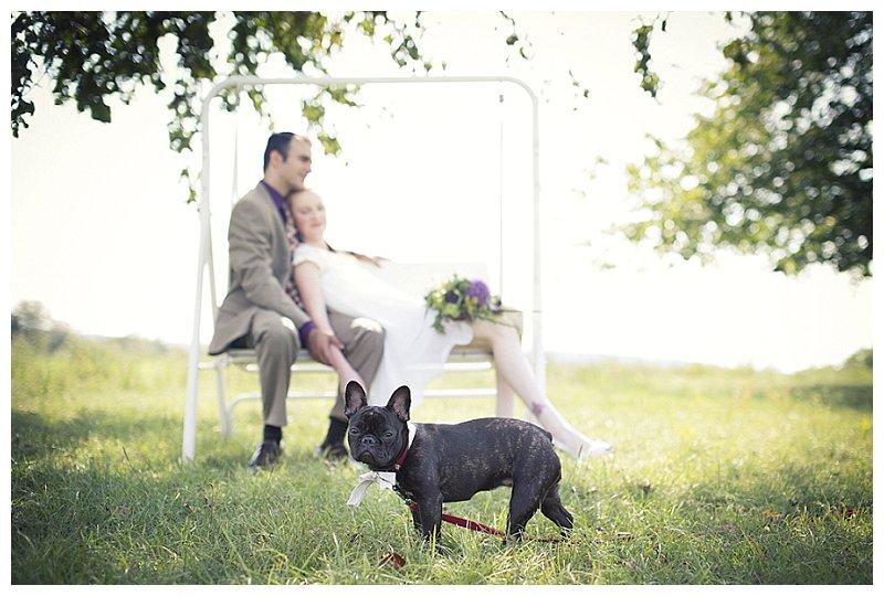 standesamtliche Hochzeit mit tierischer Begleitung von tausendschoen photography