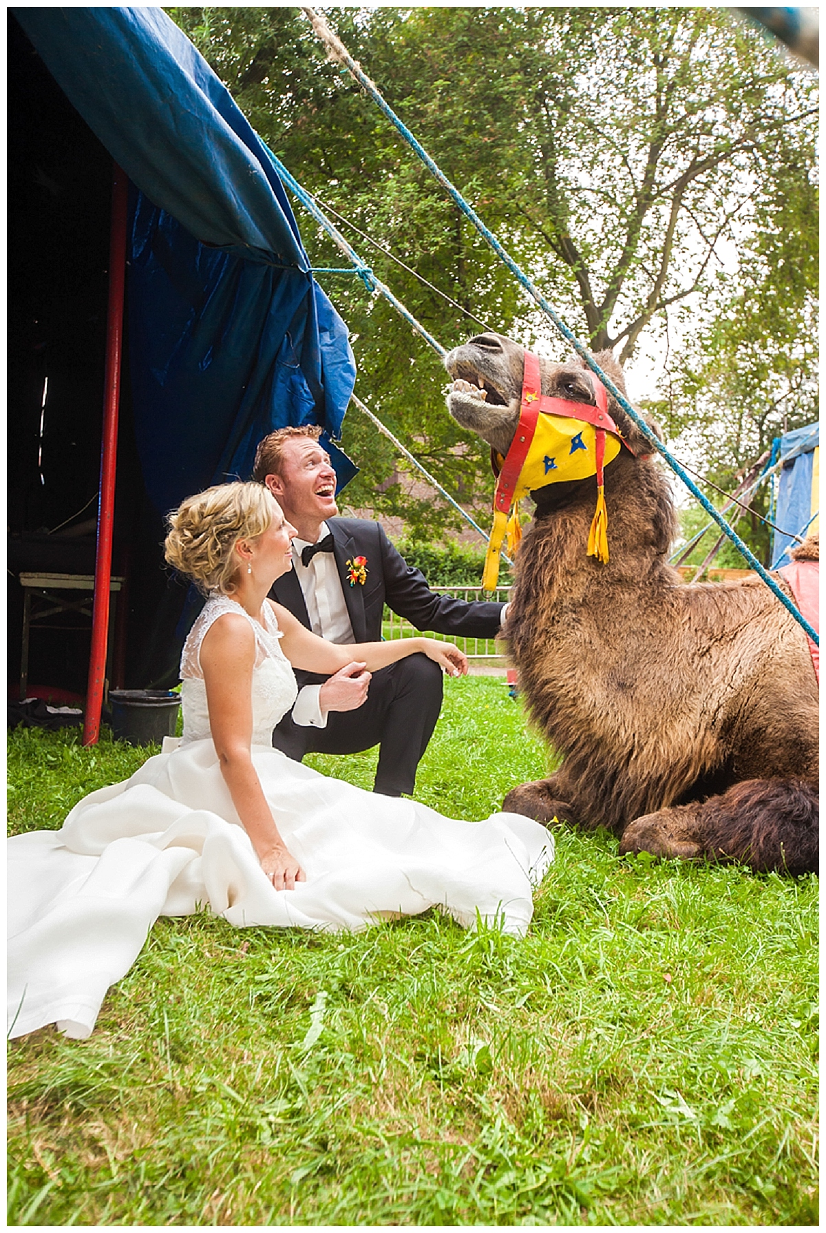 AWS Denise und Thomas Circus bunt 158_Verrueckt nach Hochzeit_ After Wedding Shooting_Zirkus